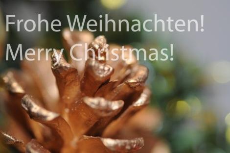 christmas-wish-solo-184